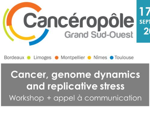 "Workshop ""cancer, genome dynamics and replicative stress"" – REPORT"