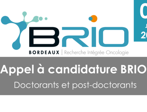 Appel à candidatures BRIO – doctorants et post-doctorants