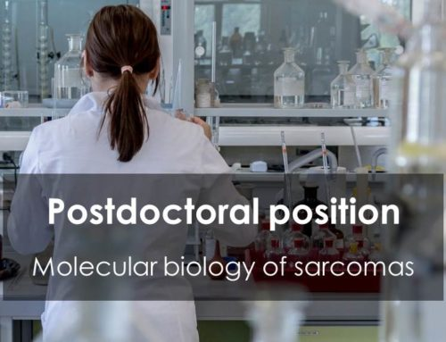 Postdoctoral position – Molecular biology of sarcomas