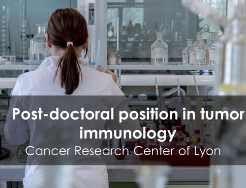 Post-doctoral position in tumor immunology